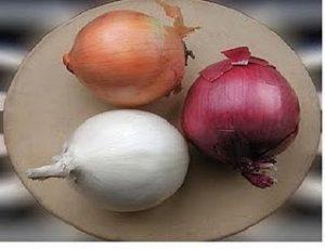 cebola colorida