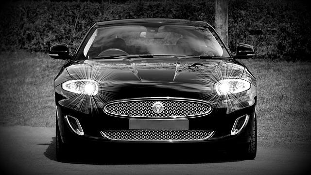 jaguar-1366978_640
